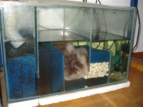 filtration pour aquarium eau de mer