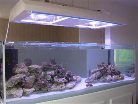le bac r 233 cifal d alex eau de mer divers aquarium webzine l aquariophilie d eau douce et d