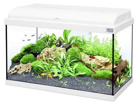 aquarium aquadream 54 litres blanc