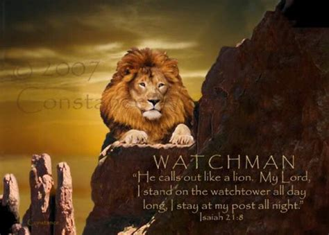17 Best Images About Lion Of The Tribe Of Judah On