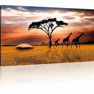 Bild 3 Teilig Auf Leinwand : savanne in afrika bild auf leinwand ~ Markanthonyermac.com Haus und Dekorationen