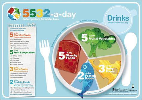 healthy for 1 3 year olds nutrition foundation parenting 101