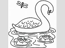 Swan Free Colouring Pages