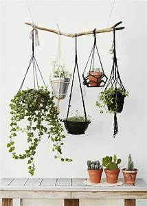 Hängende Deko Fürs Fenster : die besten 17 ideen zu blumenampeln auf pinterest pflanzenschaukeln h ngende sukkulenten und ~ Markanthonyermac.com Haus und Dekorationen