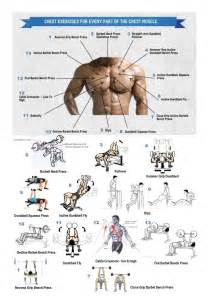 at home chest exercises 25 best ideas about mens tattoos chest on