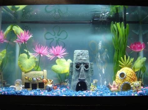 spongebob fish tank fish baby rooms babies and fish tanks