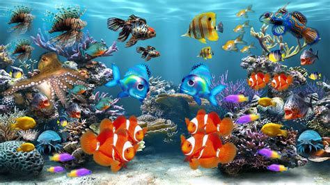 fond d 233 cran poissons gratuit fonds 233 cran aq 1265 hd desktop wallpaper free hd wallpapers