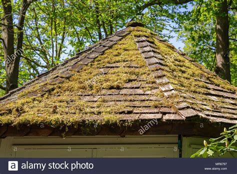 Green Roof Tiles Stock Photos & Green Roof Tiles Stock Red Roof Inn Dayton Mall Ohio Flat Tar Repair Reliable Roofing Calgary Reviews Metal Contractors Dallas Tx Repairs Dublin 15 Cp Rankin Management All Around And Siding Nj For Seniors