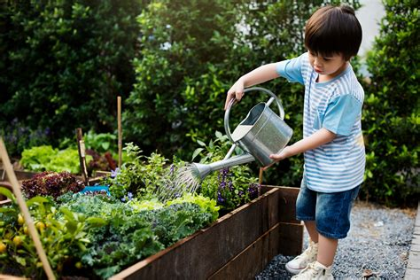 Gardening With Kids Expert Advice On Getting Your Family
