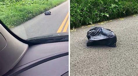 remarque un sac qui se d 233 place dans la route lorsqu l ouvre fait une