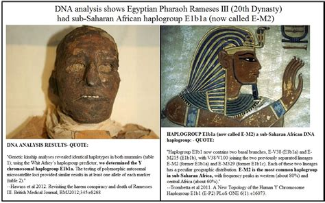 news dna evidence on pharaohs ramses iii a sub saharan black black news daily