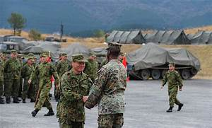Japan-U.S. military drill starts major field training ...