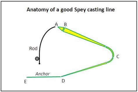 d loop spey anatomy of a spey line