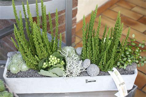 les floralies d anchin 187 plantes ext 233 rieur