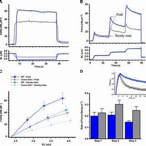 (PDF) Reduced passive force in skeletal muscles lacking ...