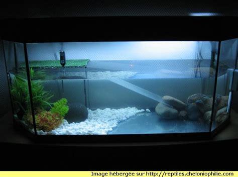 aquarium pour tortue trouvez le meilleur prix sur voir