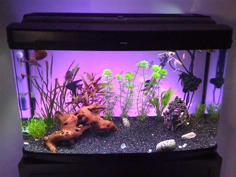 aquarium 120l 224 vendre
