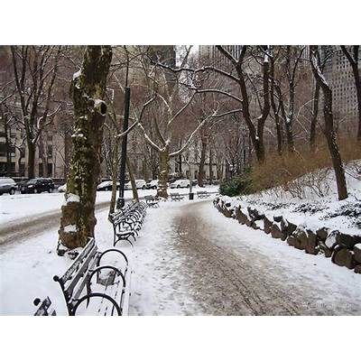 Central Park in New York City - Winter 2009 by Wayne