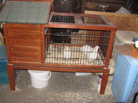 am 233 nagement de cages d hiver pour cailles reproductrices