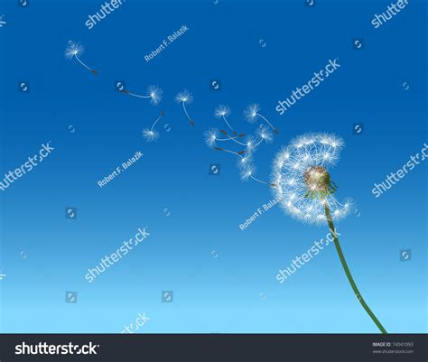 Vector Graphic Illustration Depicting Dandelion Seed