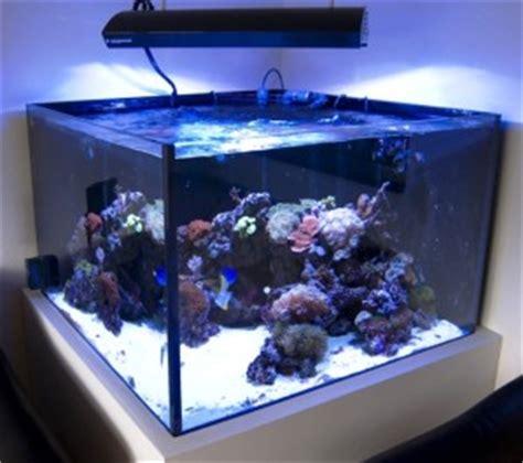 aquarium eau de mer 400 litres