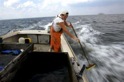 Deck Boat Job by Deckhand Job Description With Pictures Ehow