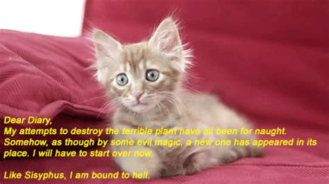 Sad Cat Quotes Quotesgram. Short Veteran Quotes. Family Quotes Cover Photos For Facebook. Happy Quotes Robin Williams. Hurt Quotes In Malayalam. Defeat Depression Quotes. Birthday Quotes. Adventure Time Lsp Quotes Youtube. Song Quotes Muse