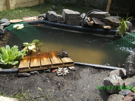 tortues d eau de l aquarium au bassin page 2