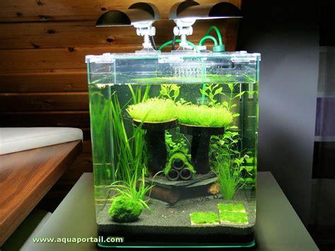 accueil guide du d 233 butant aquariophilie eau douce