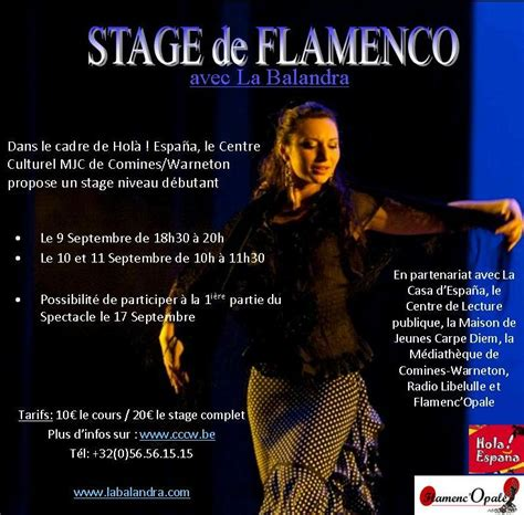 affiche spectacle festival flamenco n 238 mes mont de marsan dunkerque arras boulogne sur mer lille