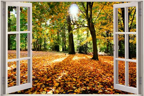 3d vue fen 234 tre effet automne for 234 t nature autocollant mural poster vinyle ebay