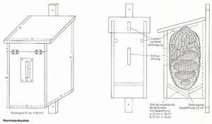 Bauplan Für Ausziehtisch : insektenhotel selbst bauen bauanleitungen ~ Markanthonyermac.com Haus und Dekorationen