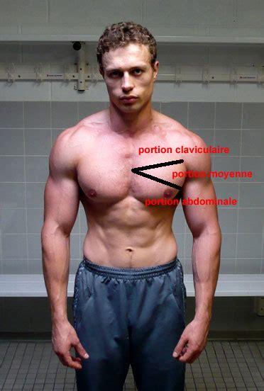 programme de musculation pectoraux superphysique
