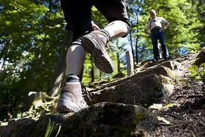 Das Herz Des Waldes : wandern ~ Markanthonyermac.com Haus und Dekorationen