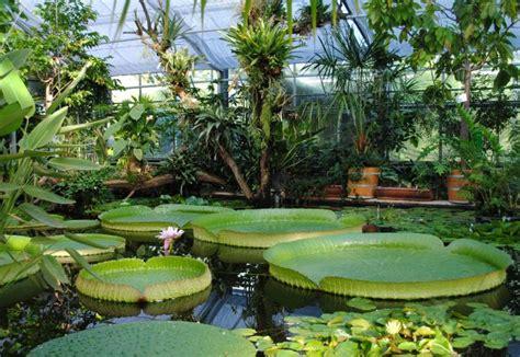 Botanischer Garten Der Tu Dresden  Alle Veranstaltungen