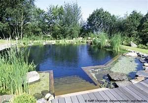 Badeteich Im Garten : pool oder schwimmteich im garten bauen garten hausxxl garten hausxxl ~ Markanthonyermac.com Haus und Dekorationen