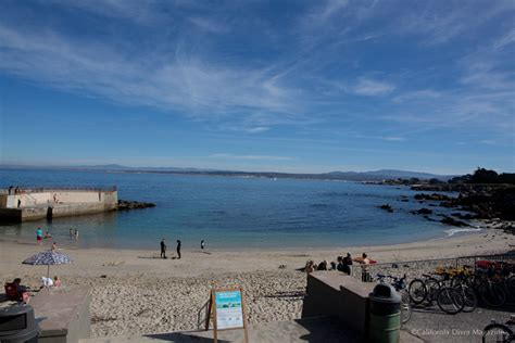 Monterey Scuba Dive Boats by Lovers Point Declared Clean For Swimming Diving After