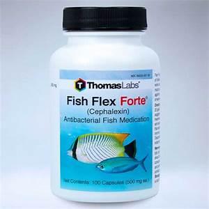 fish flex forte cephalexin 500mg 100 ct
