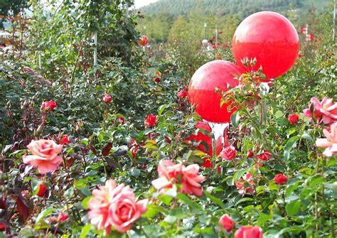 Gartendeko Gartendekoration Glaskugeln Rosenkugeln Rotes
