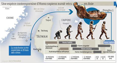 une nouvelle esp 232 ce humaine pourrait avoir 233 t 233 d 233 couverte 224 ta 239 wan