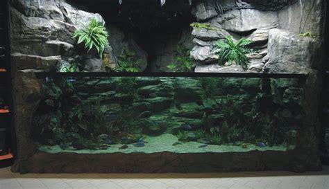photo id 233 e aquarium pas cher