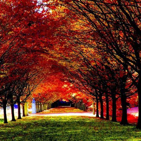 10 New Beautiful Fall Desktop Backgrounds Full Hd 1080p