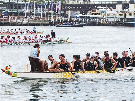 Dragon Boat Festival Sydney by Chinese New Year Festival Sydney Explore Australia With Kids