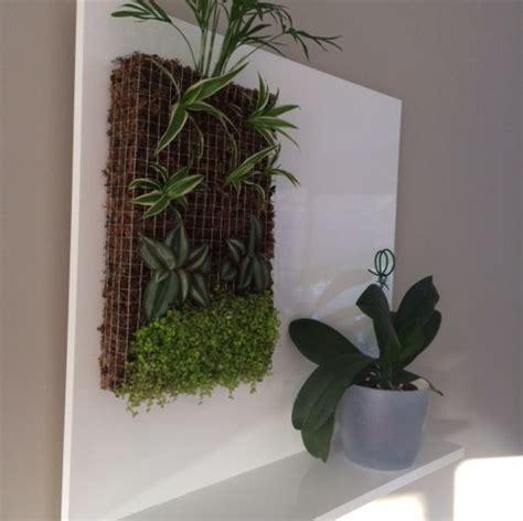 mur vegetal pas cher montpellier 13 bursasamsung xyz