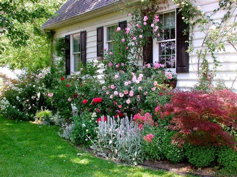 Cottage Garden Plants And Shrubs « Margarite Gardens
