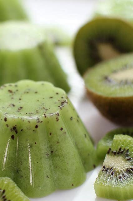 masam manis dessert kiwi pudding pudding agar