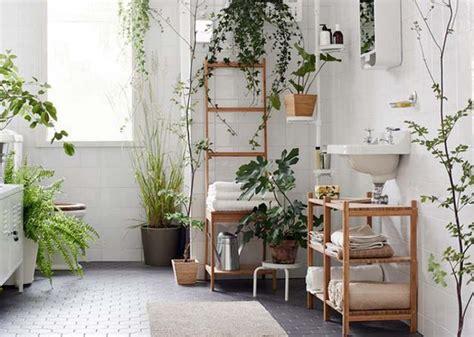 des plantes vertes pour une salle de bains tendance