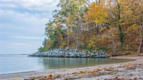 Boating Accident Gloucester by Official Body Of Missing Boater Found On Shores Of York