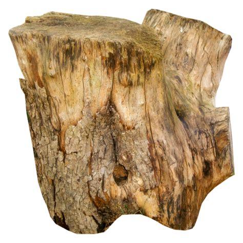 tronc d arbre tronc d arbre decoration souche