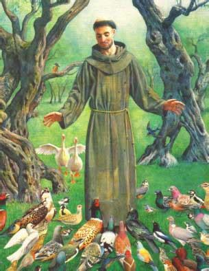 st francis about st francis